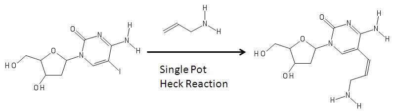 Heck coupling aminoallyl nucleotide reaction
