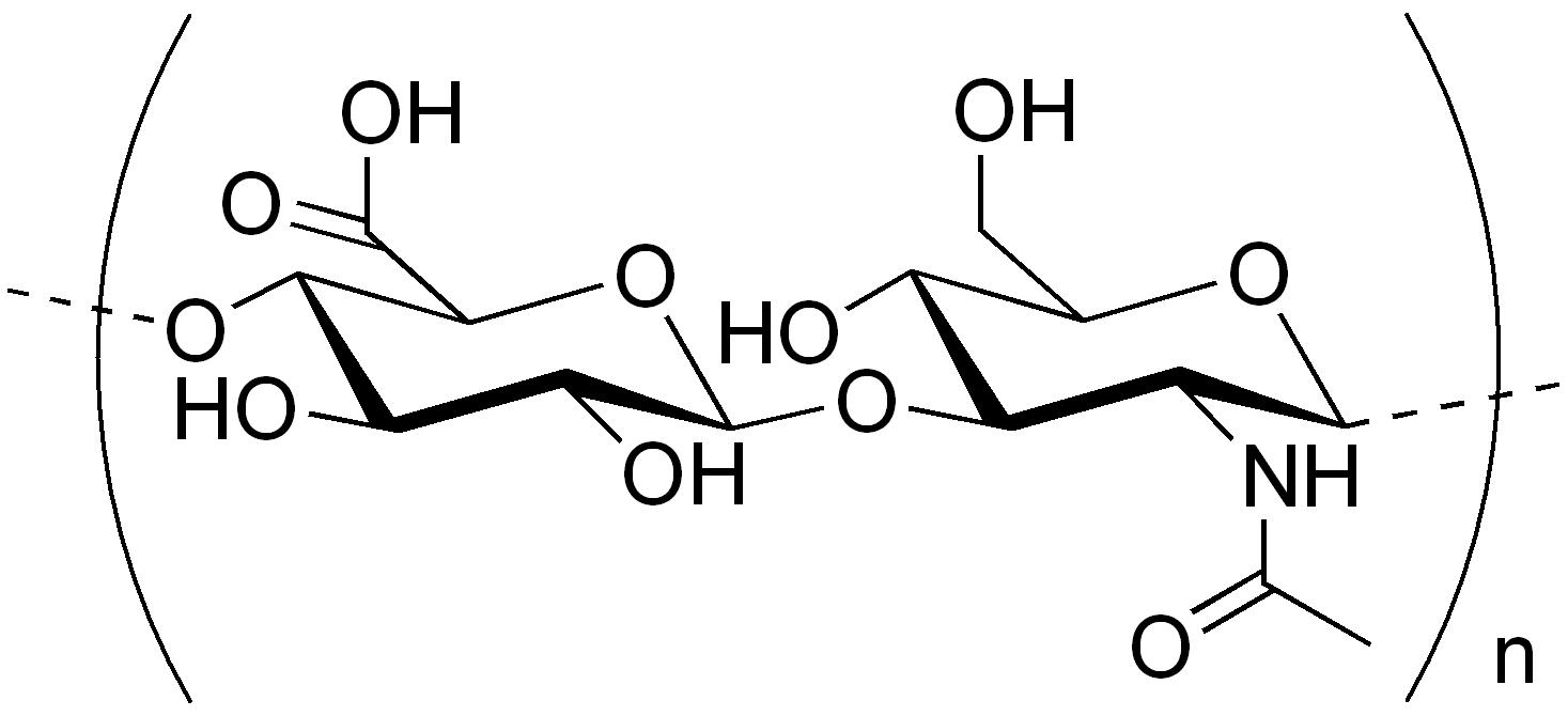 Гиалуроновая кислота химия реферат 50
