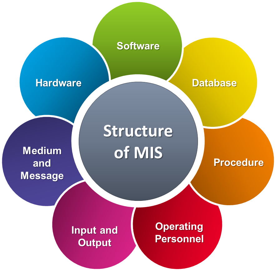 Management Information Systems (MIS) & Accounting Information System