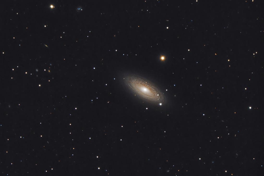 NGC2841HunterWilson.jpg