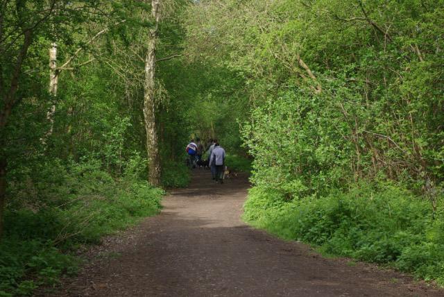 Nutbrook Trail, Marlpool - geograph.org.uk - 1265436