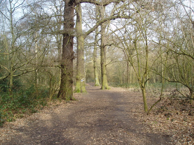 Petts Wood, Kent - geograph.org.uk - 137110