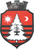 Coat of arms of Băile Tușnad