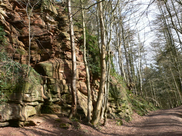 Red Rocks, Wepre Park - geograph.org.uk - 709476