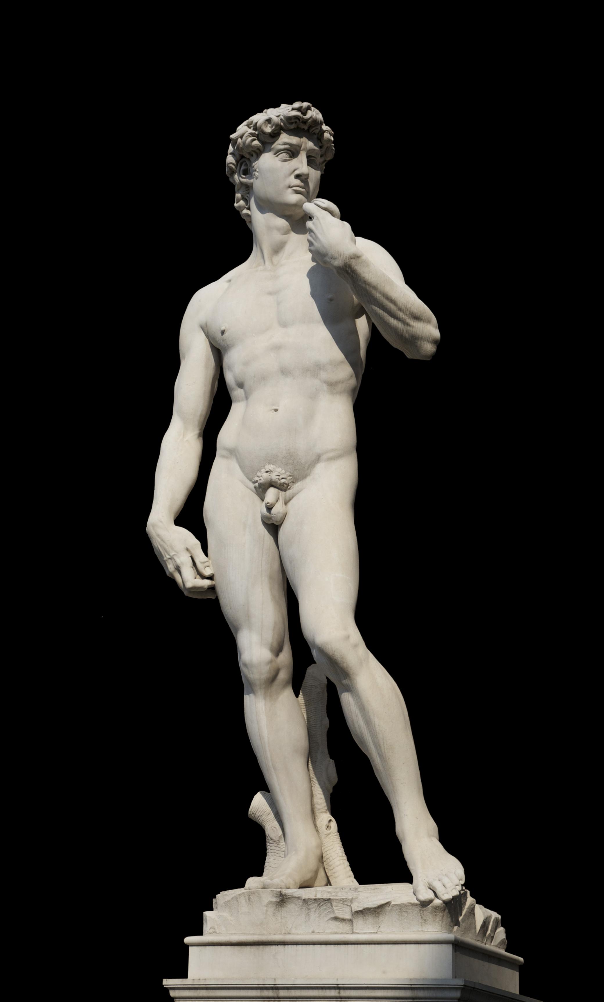 Michelangelo s david have