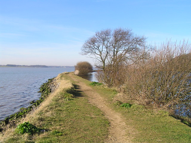 River Orwell from Loompit Lake - geograph.org.uk - 1021513