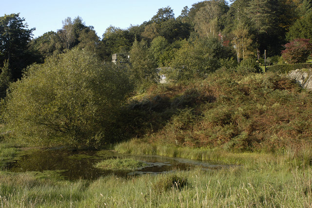 Small tarn at White Moss Common - geograph.org.uk - 988691