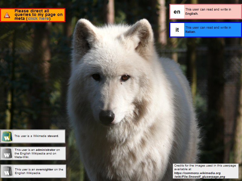 Alt=Please direct all queries to http://meta.wikimedia.org/wiki/User:Snowolf