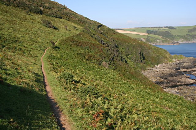 The Coast Path near Pencarrow Head - geograph.org.uk - 535178