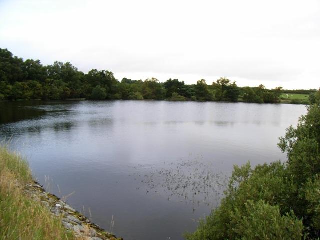 Vartry Reservoir near Knocktemple, Co. Wicklow - geograph.org.uk - 1419548