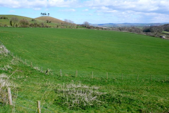 View from Quarr Lane - geograph.org.uk - 1231909