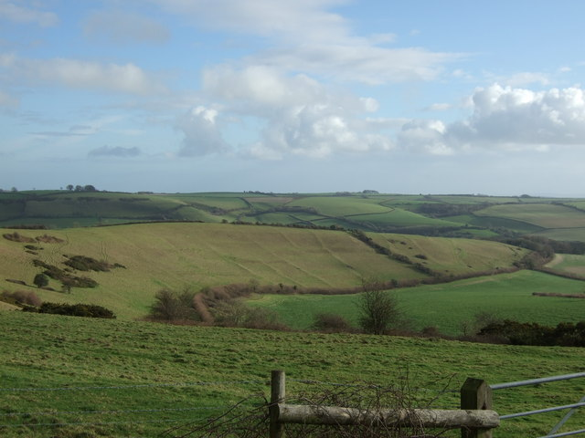 View_of_hillside_with_medieval_fields_system_-_geograph.org.uk_-_311358.jpg