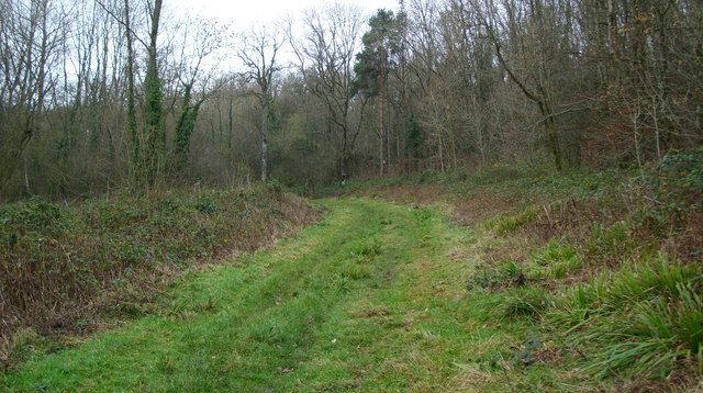 A Sunday afternoon yomp through Highnam Woods-9 - geograph.org.uk - 1067972