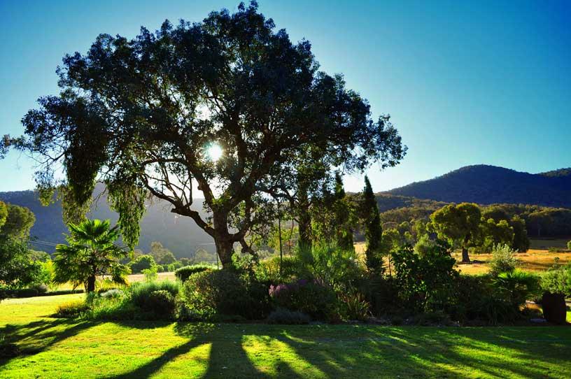 File:Afternoon Sun, Kiewa Valley, Australia (7041076327 ...