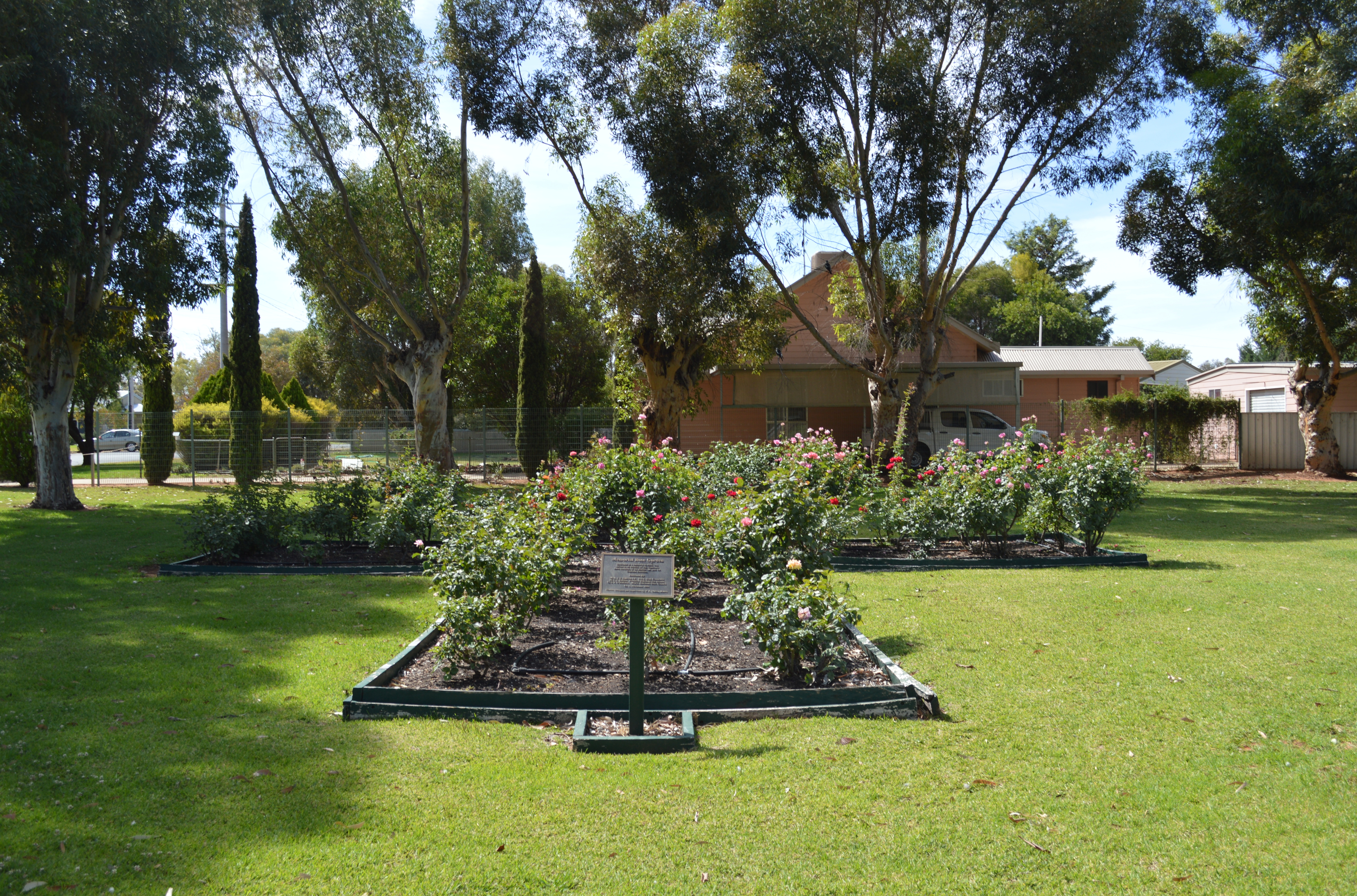 File Balranald Memorial Rose Garden 001 Jpg Wikimedia
