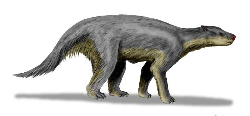 Pantodonta