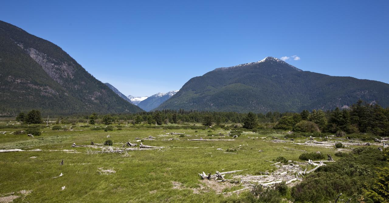how to get to bella coola