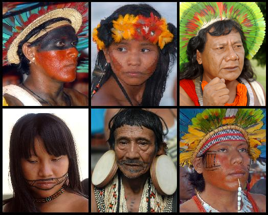 Brazilian Indigenous Peoples By Lecen [CC-BY-3.0 (http://creativecommons.org/licenses/by/3.0)], via Wikimedia Commons