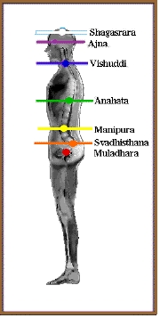 Diagram of the location of chakras as describe...