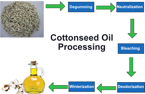 Cottonseed Oil Processing Steps