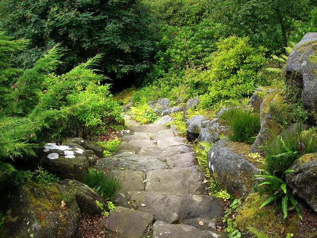 Cragside Estate, rock garden - geograph.org.uk - 920157