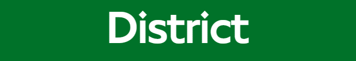 File:District line flag box.png