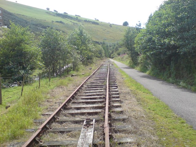 Disused railway line - geograph.org.uk - 1460302