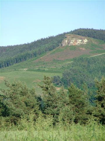 Highcliff Nab, Guisborough - geograph.org.uk - 22185