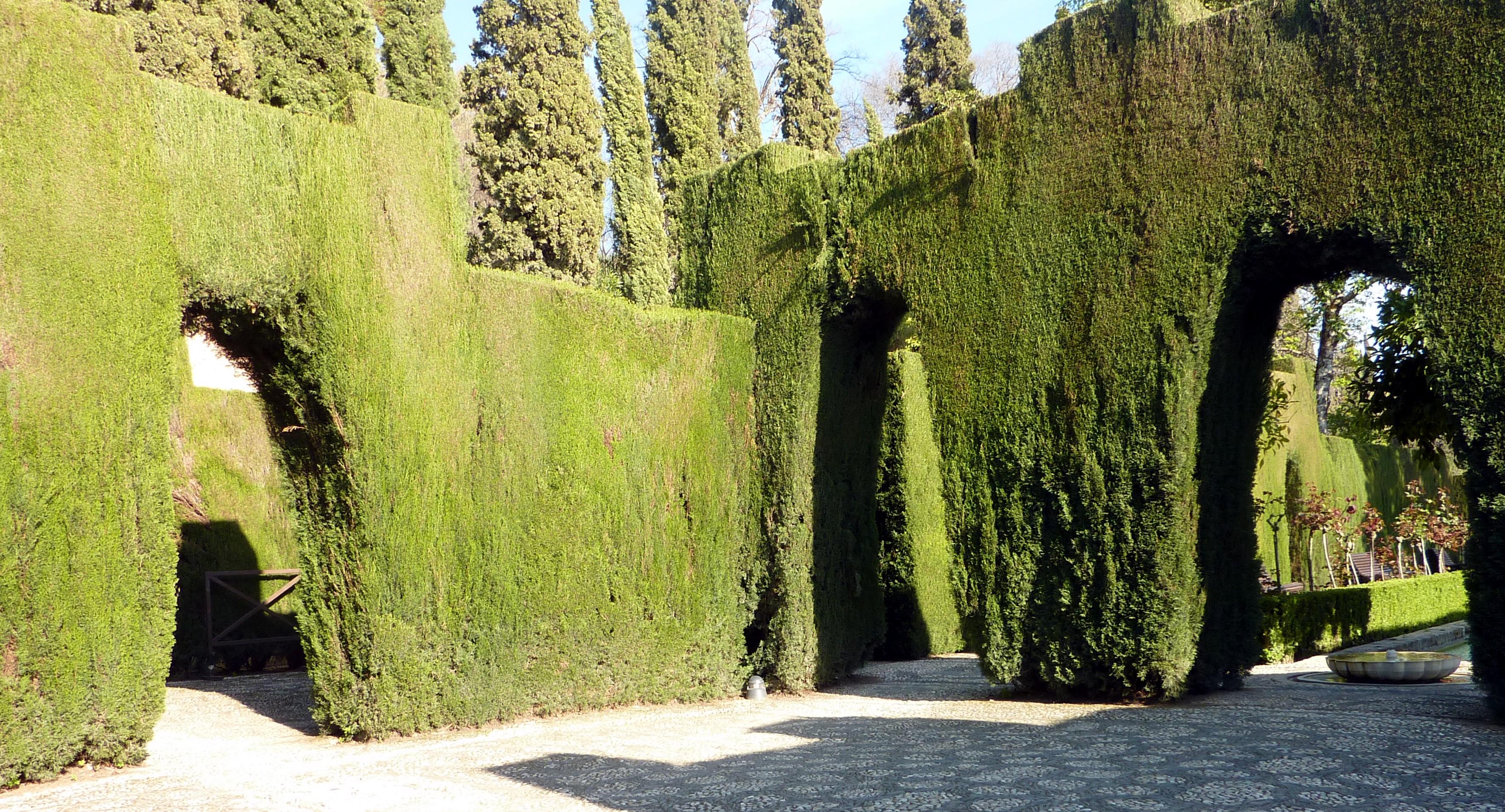 filejardn del generalife la alhambrajpg - Jardin De L Alhambra