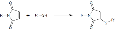Maleimide reaction.png