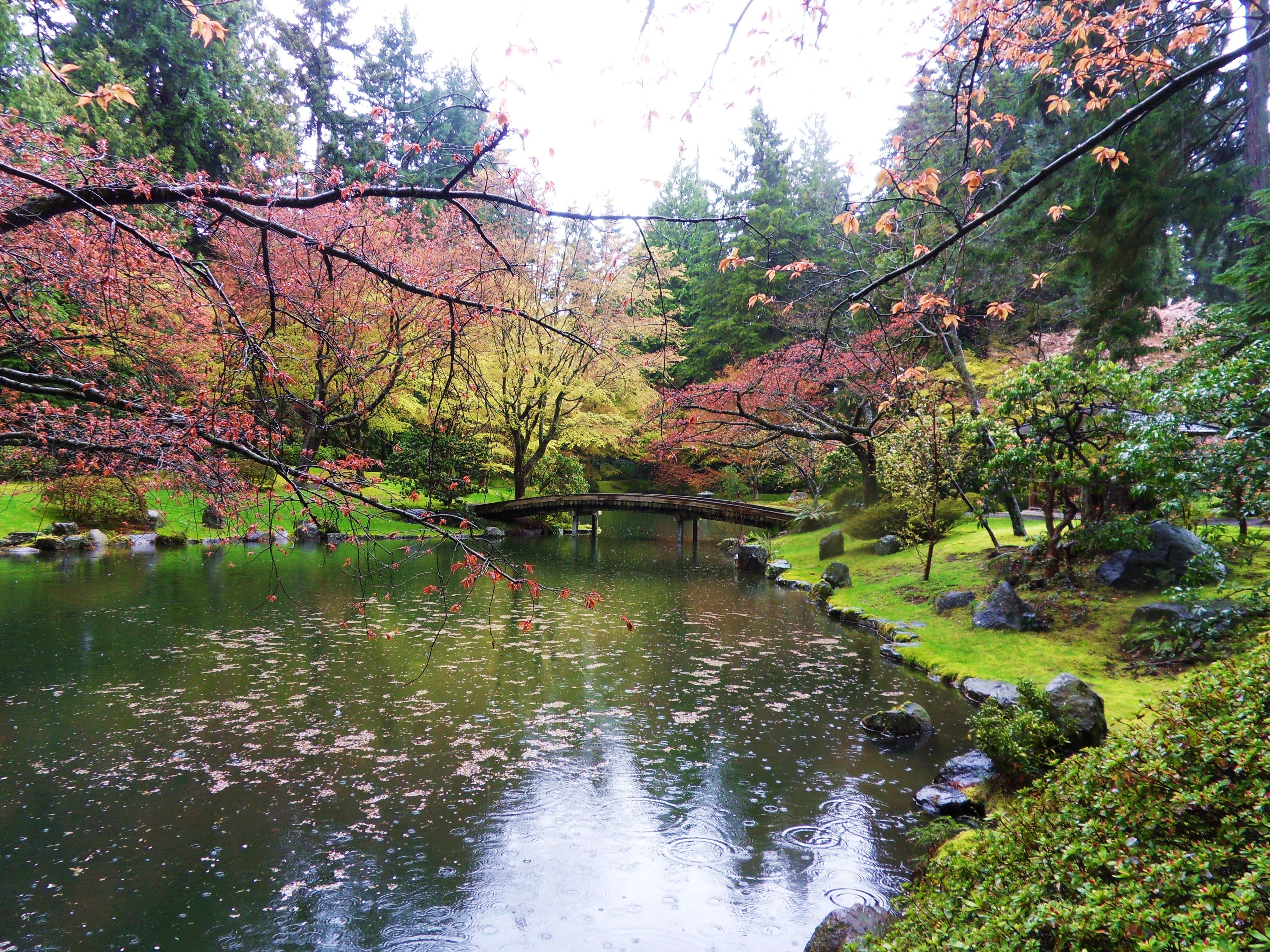 File:Nitobe Memorial Garden 99.jpg