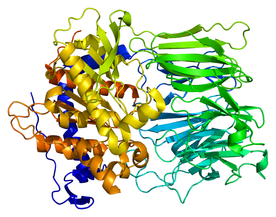 Prolyl endopeptidase - Wikipedia