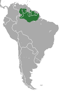 Red-backed Bearded Saki area.png