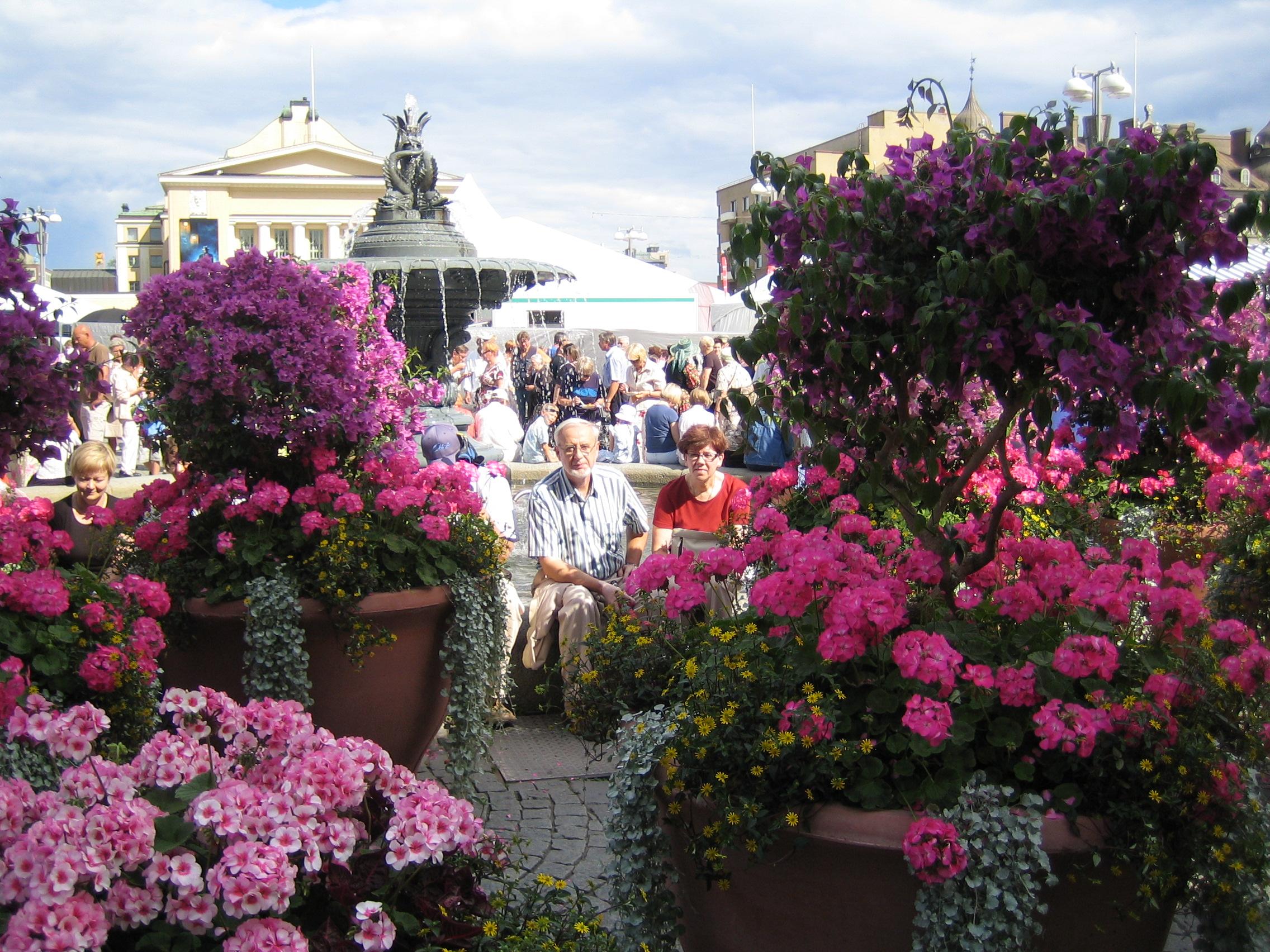 Фото цветов финляндии
