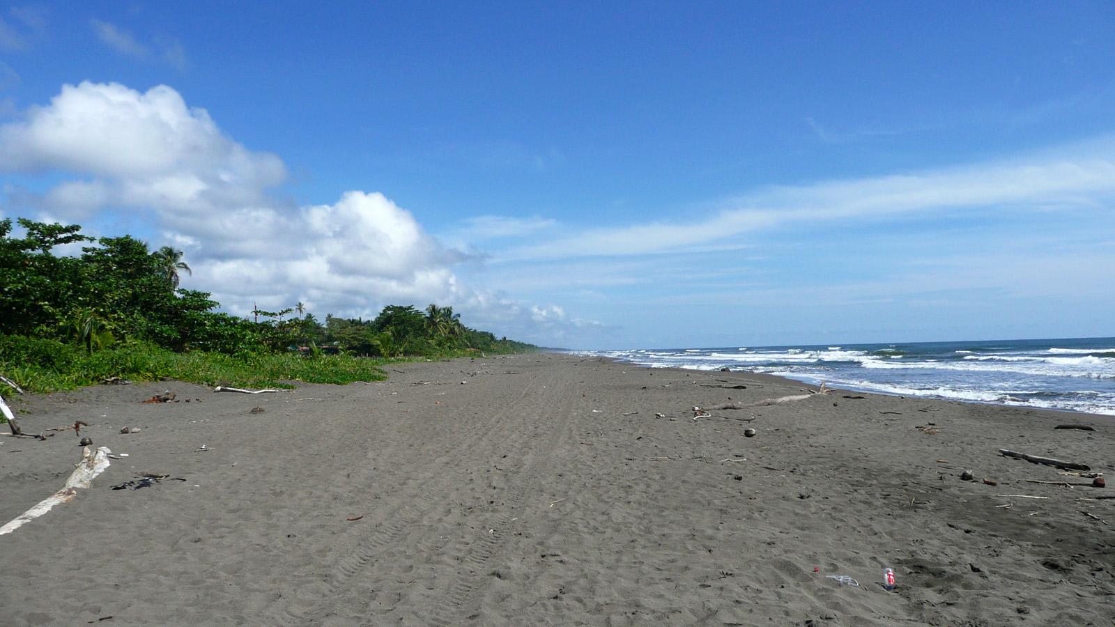 File Tortuguero Beach Costa Rica Jpg