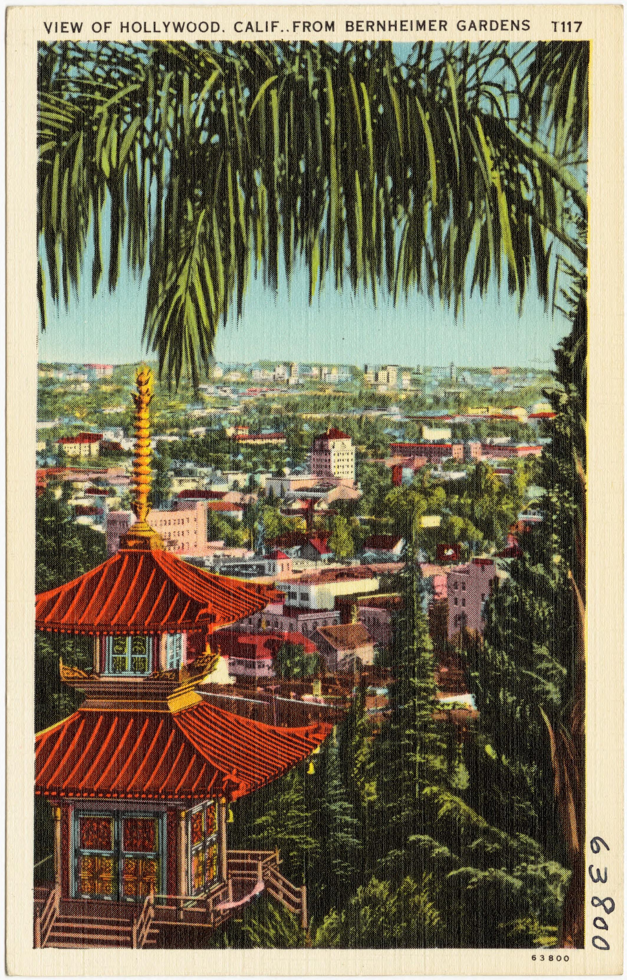 File:View of Hollywood, Calif. From Bernheimer Gardens (63800).jpg ...