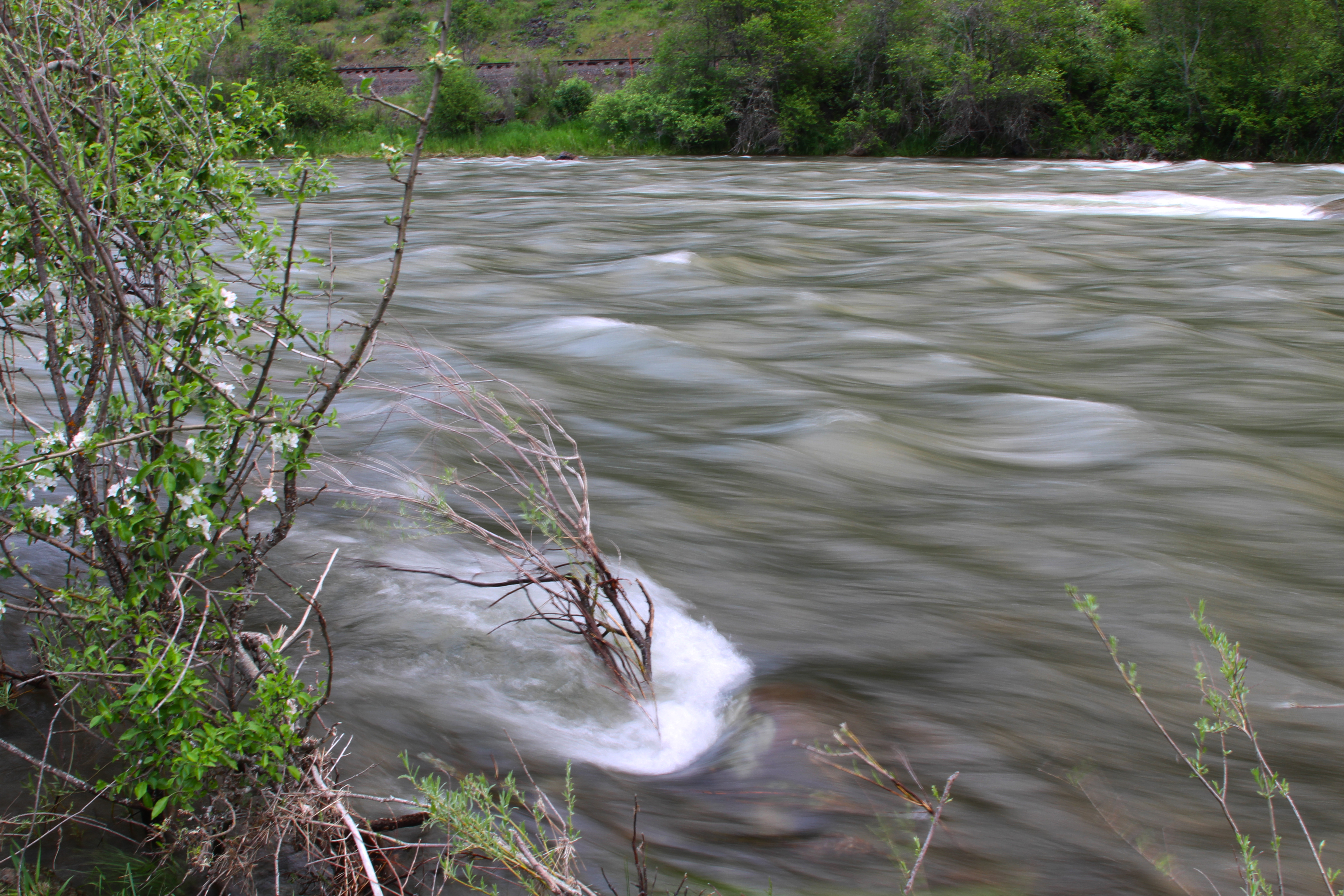 Oregon, to its confluence with the Grande Ronde River, the Wallowa is the gateway to the Wild and Scenic Grande Ronde River. Approximately 10 miles in length