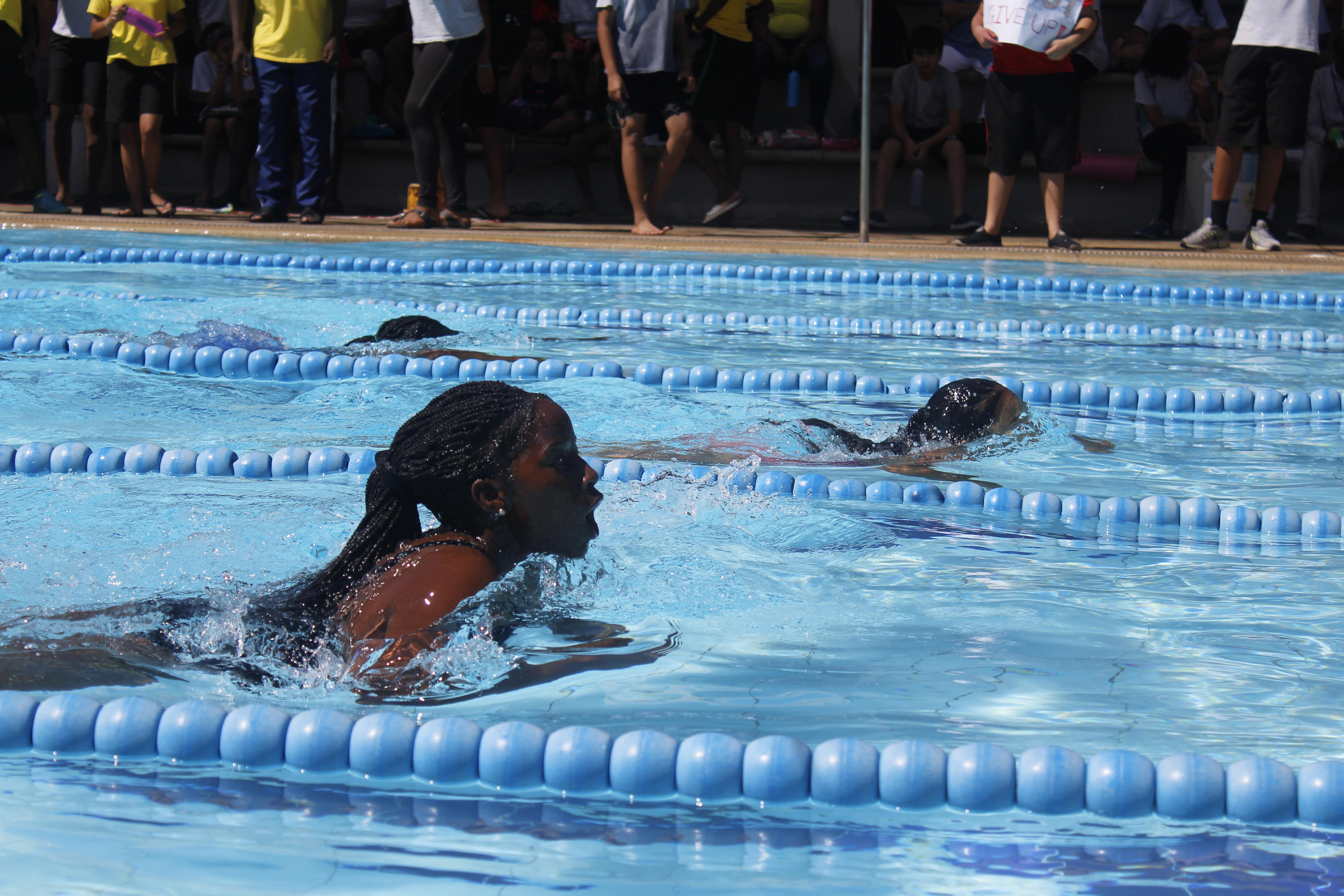 De verschillende niveaus van wedstrijdzwemmen