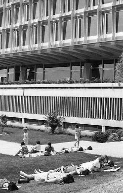 Women sunning selves at Geneva headquarters of World Health Organization, 1969.jpg