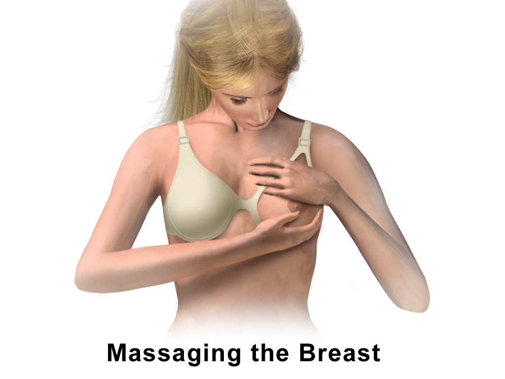 Amazoncom: breast shape