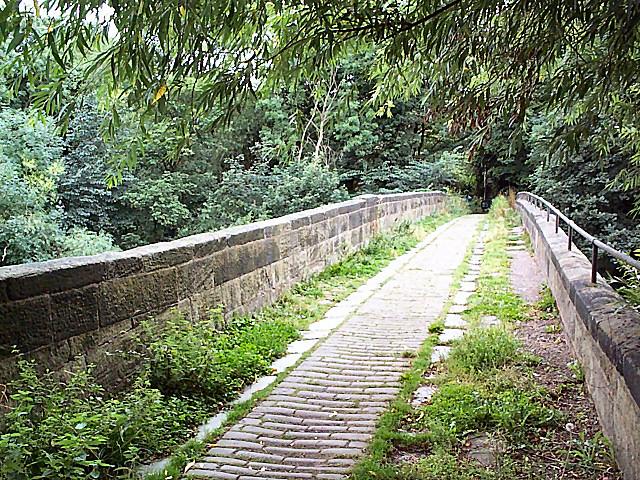 Calverley Pack Horse Bridge - geograph.org.uk - 43952
