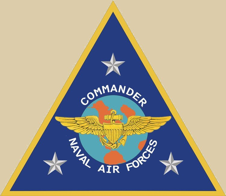 united states navy and naval flight Ashore, commander coleman served as an instructor naval flight officer and commander, naval air forces (cnaf) evaluator at vaw-120 fleet replacement squadron (frs) this is an official united states navy website.