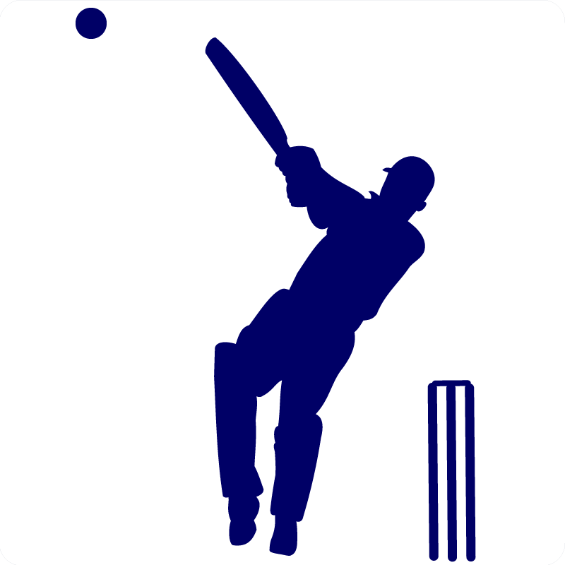 FileCricket Hit Wall Sticker1