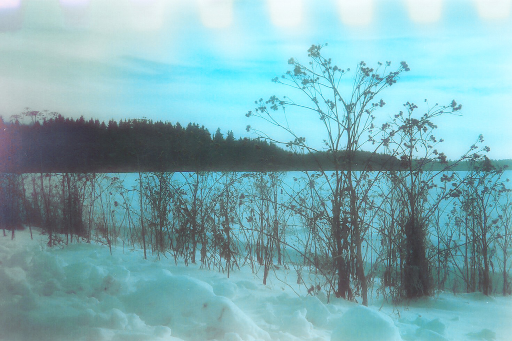 Description Defective film - blue winter.jpg