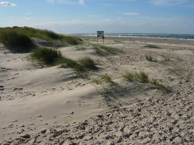 S E Dune Drive Hutchinson Island Stuart Fl