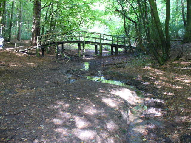 Footbridge in Sewer's Copse - geograph.org.uk - 575606