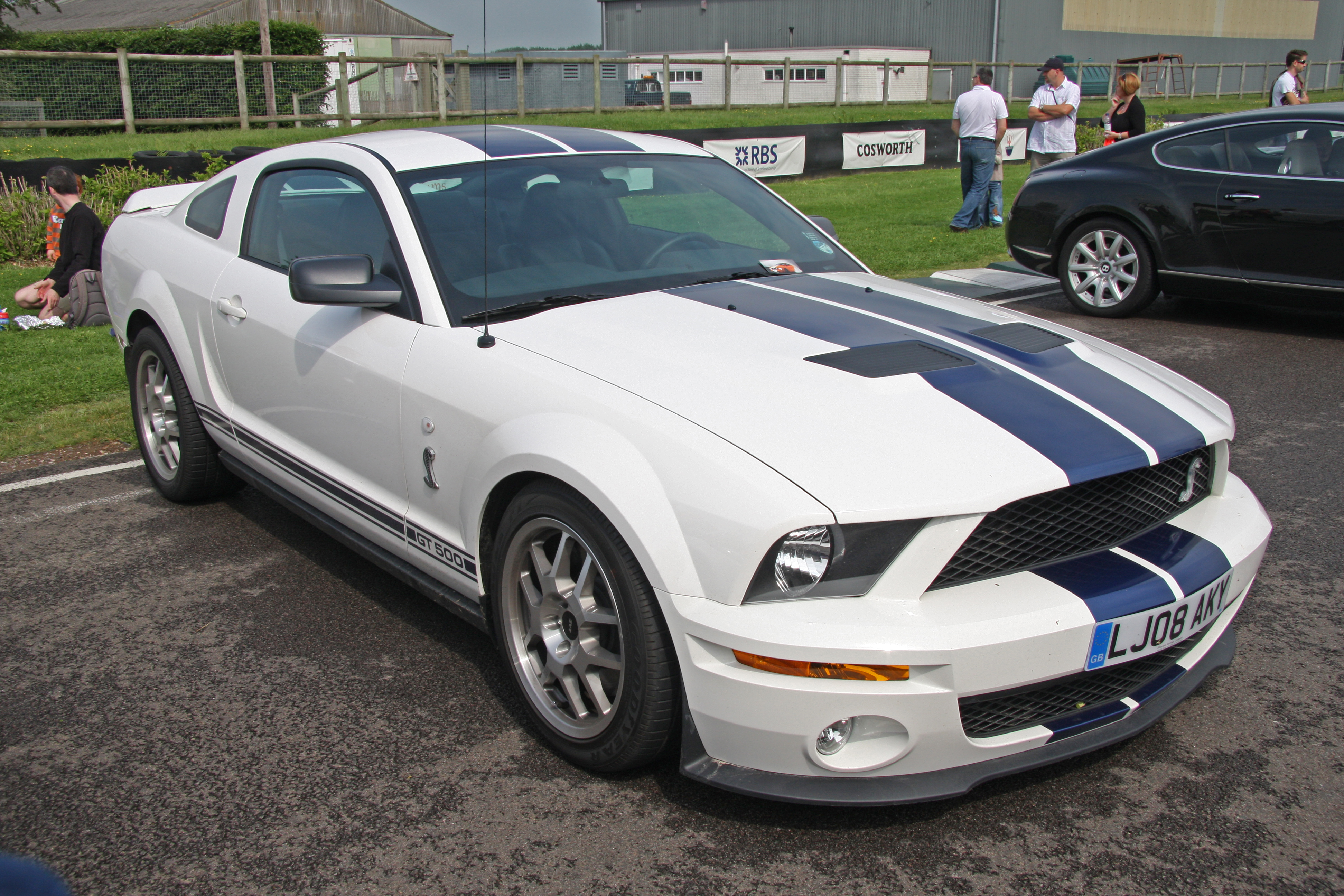 Fileford mustang shelby gt 500 flickr exfordy jpg wikimedia