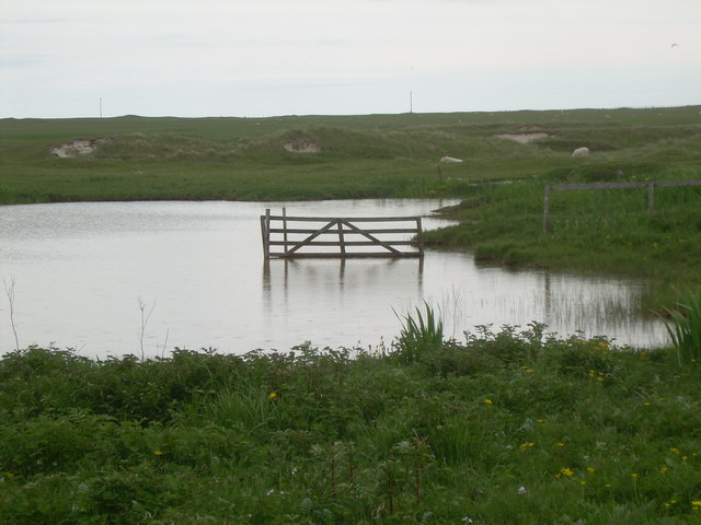Gate to nowhere - geograph.org.uk - 849441