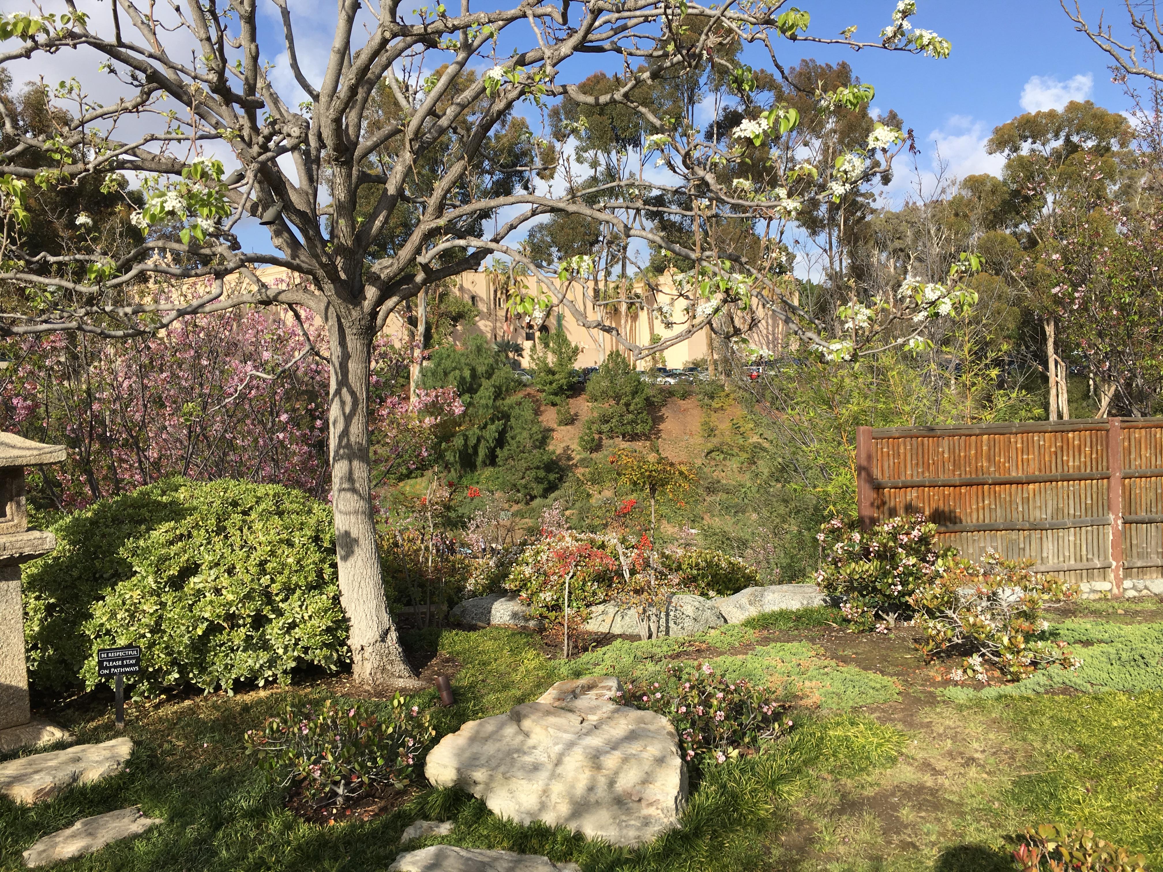 File:Japanese Friendship Garden (Balboa Park, San Diego) 24 2016-05 ...