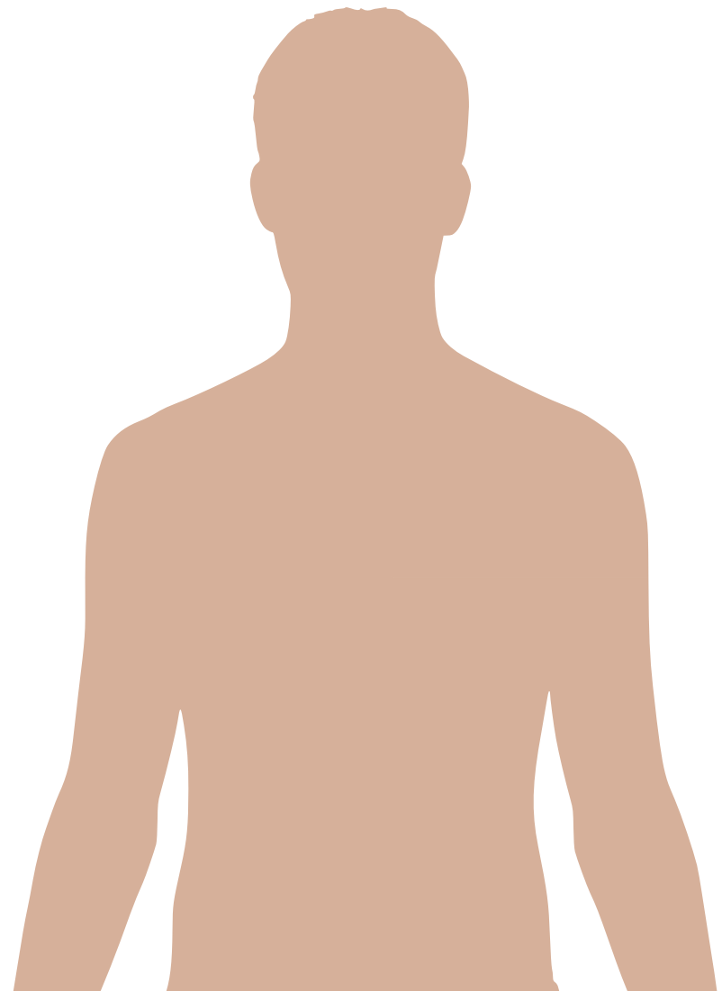 Human body diagrams - Wikimedia Commons